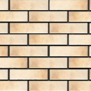 Термопанели фасадные Аляска Retro brick salt